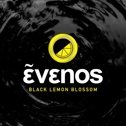Λογότυπο Κώστας & Παντελής - Evenos